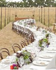 Serpentine Seating Arrangement for an Outdoor Wedding