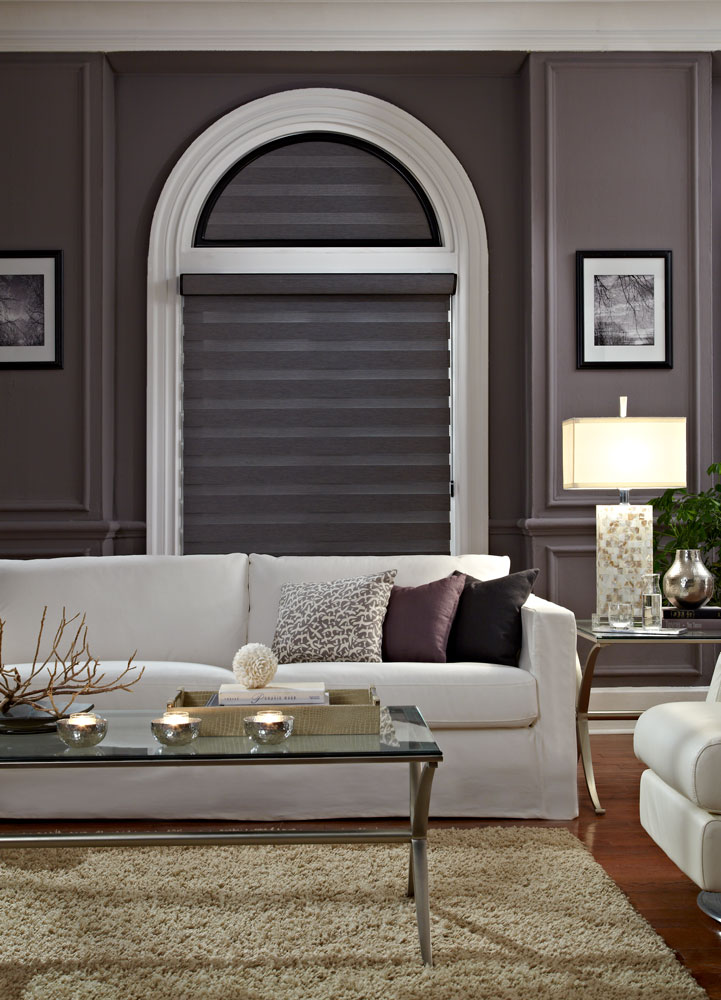 Dark gray Allure® Transitional Shade with a specialty shape half circle above in the closed position against a dark wall with a white couch in front