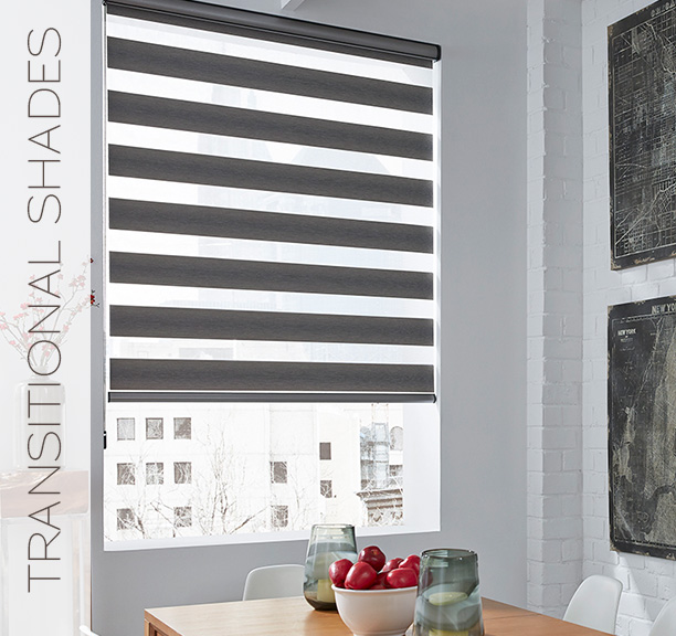 LIF Transitional Shades (Lafayette Interior Fashions)