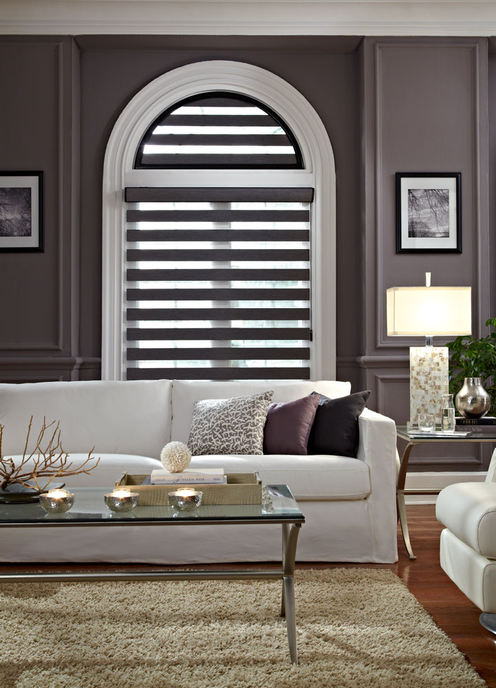 Dark gray Allure® Transitional Shade with a specialty shape half circle above in the open position against a dark wall with a white couch in front