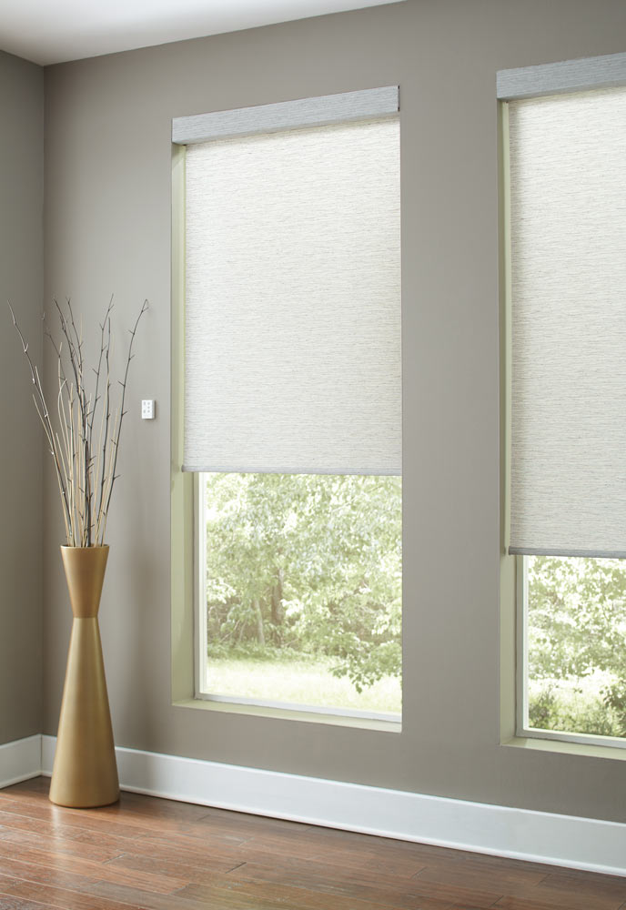close up view of two Genesis® Custom Roller Shades against dark gray walls and a golden plant holder nearby