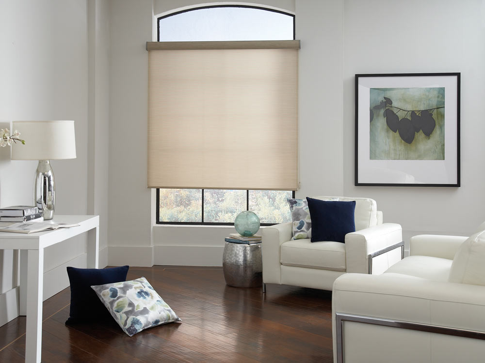 tan Genesis® Roller Shades and Interior Masterpieces® Custom Pillows in blue and floral patterns scattered around the room