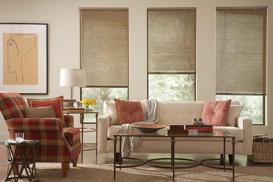 Living Room Window Treatments | Lafayette Interior Fashions