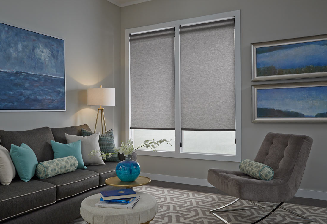 Two large gray Genesis® Dual Roller Shades behind a dark gray couch with accenting blue, gray, and green Interior Masterpieces® Custom Pillows