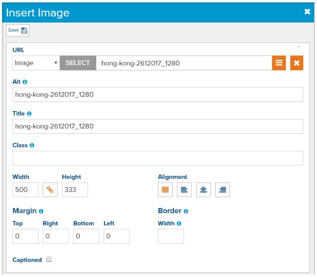 dialog-editor-image-properties