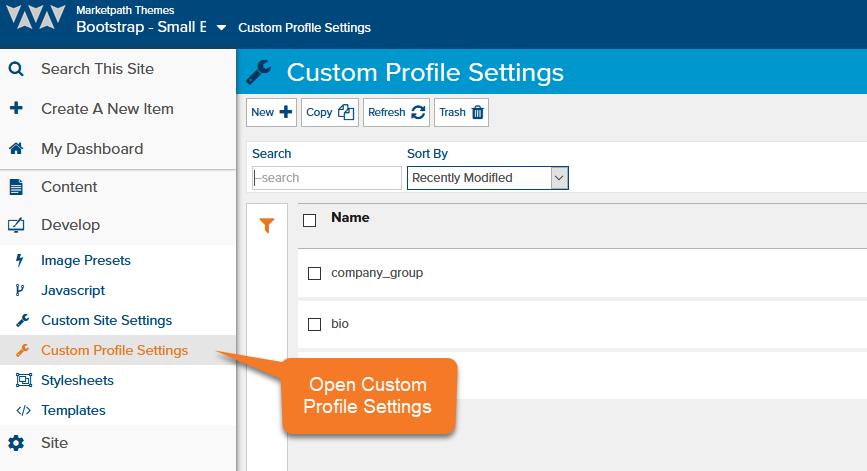 accessing-custom-profile-settings