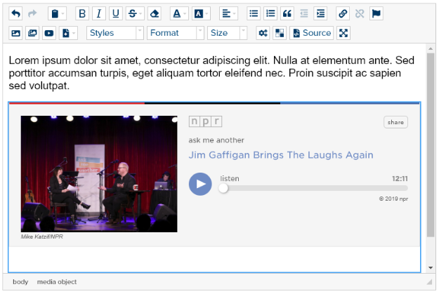 html-editor-with-embed-npr-audio
