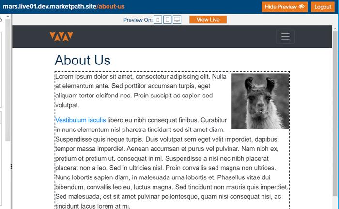 content-page-edit-editable-area-click
