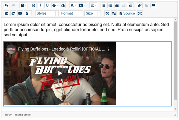 html-editor-with-embed-video
