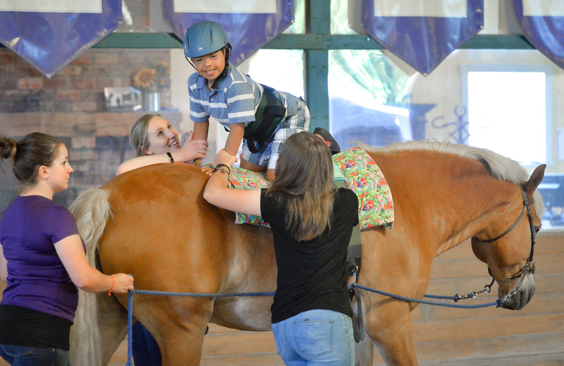 Occupational therapy - riding quadruped