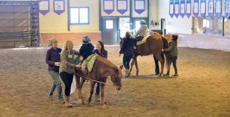 Hippotherapy as incorporated into physical and occupational therapies