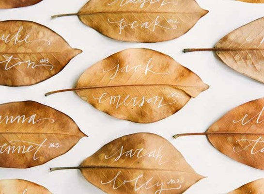 Hand painted leaves as escort cards is a unique idea for a fall wedding reception