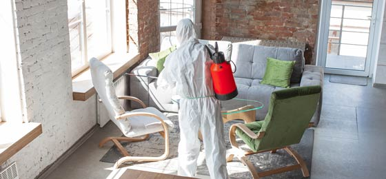 Coronavirus Disinfection Services for Offices and Homes (source: freepik.com)