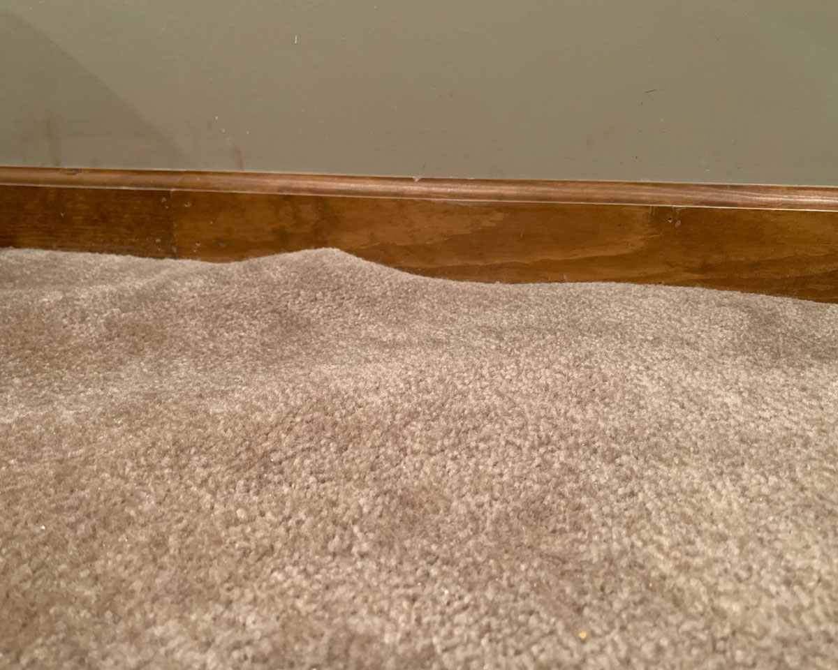 Carpet ripple in Indianapolis home
