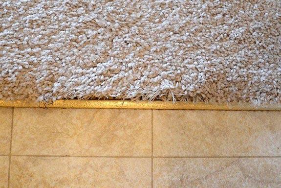 Carpet-to-Tile-Transition