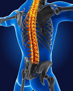 gastonia spine surgery