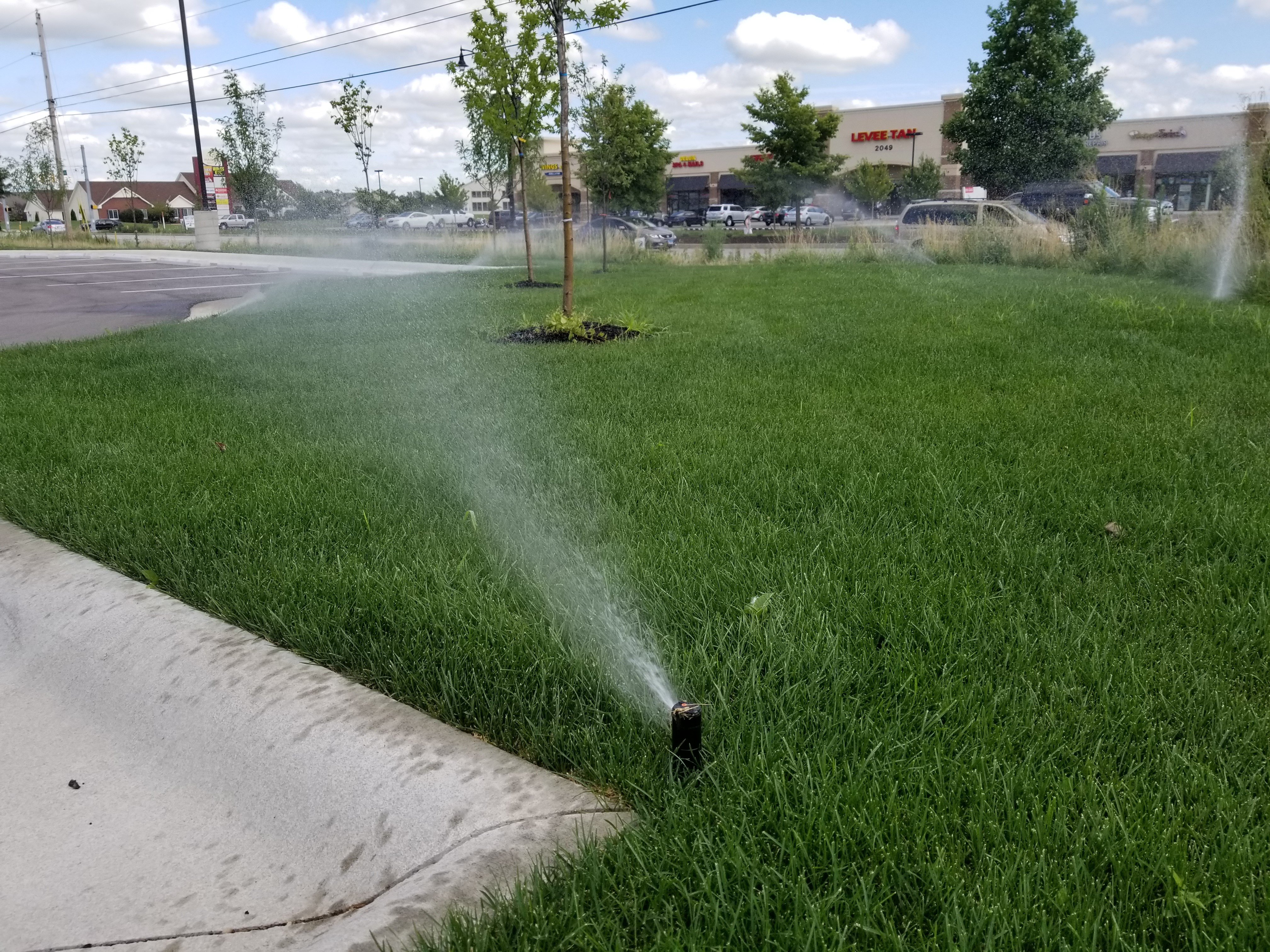 Lafayette Commercial Landscaping