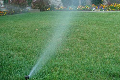 Sprinkler System Tips