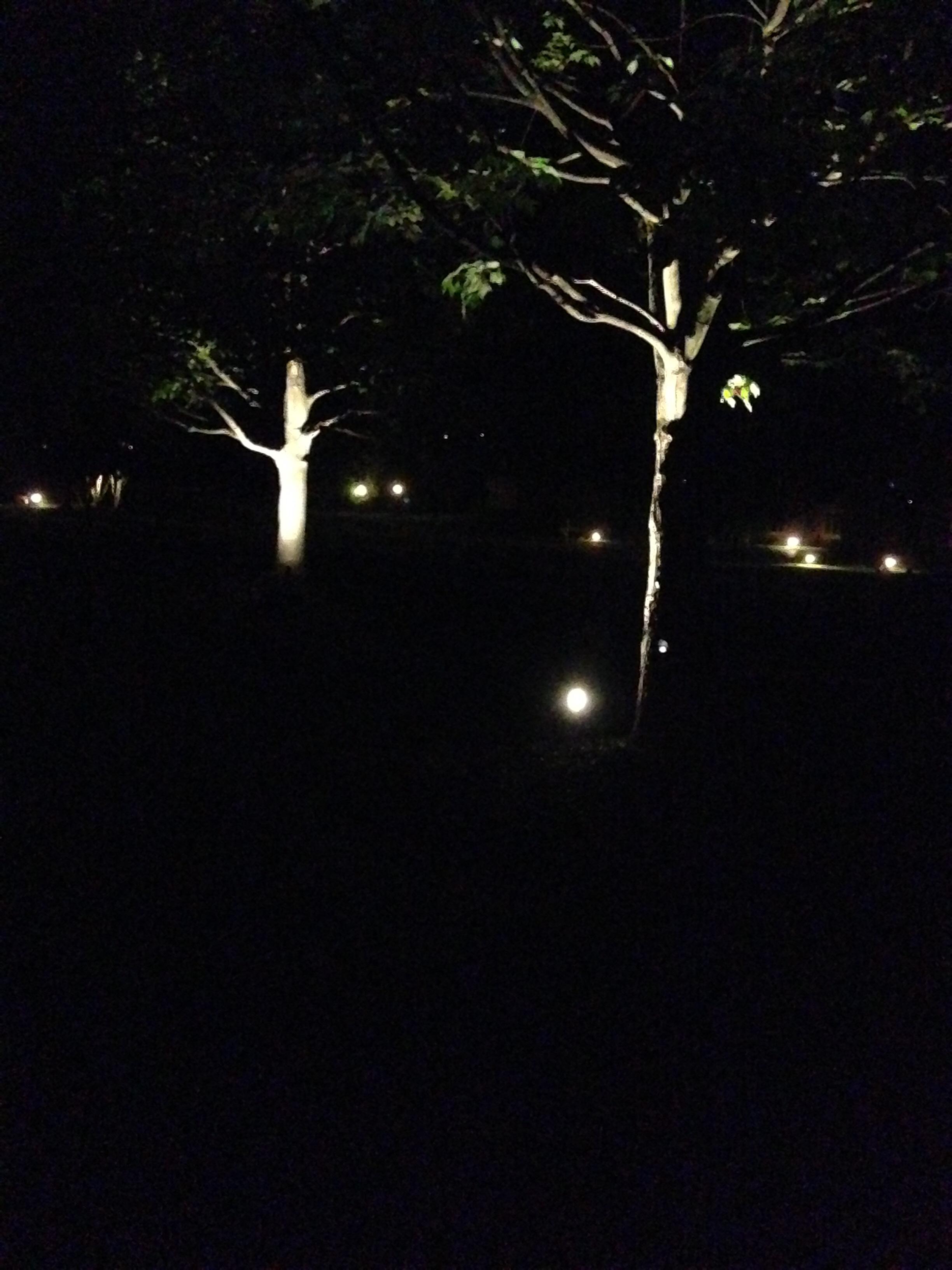 Carmel Outdoor Lighting