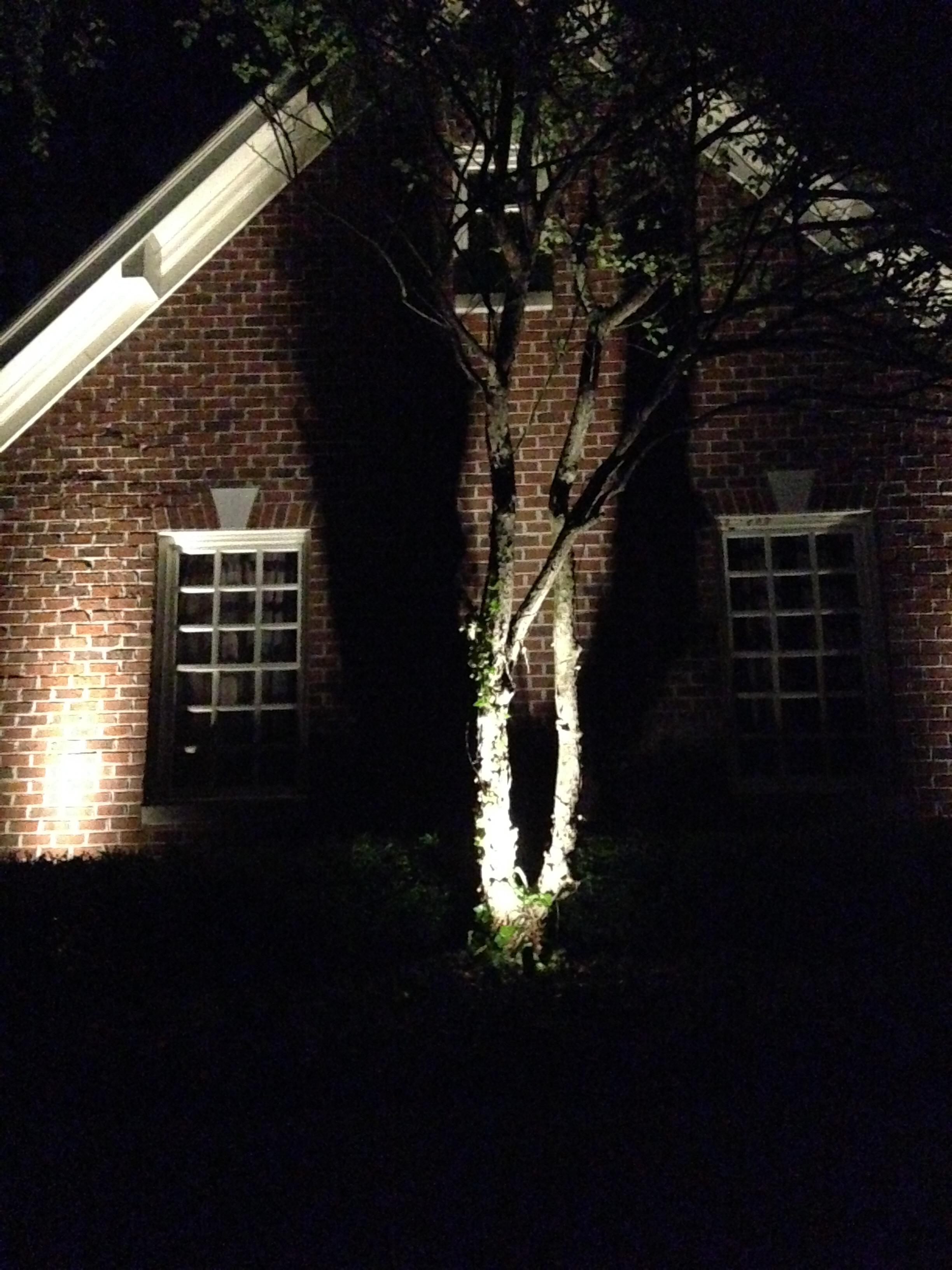 Carmel Landscape Lighting Design
