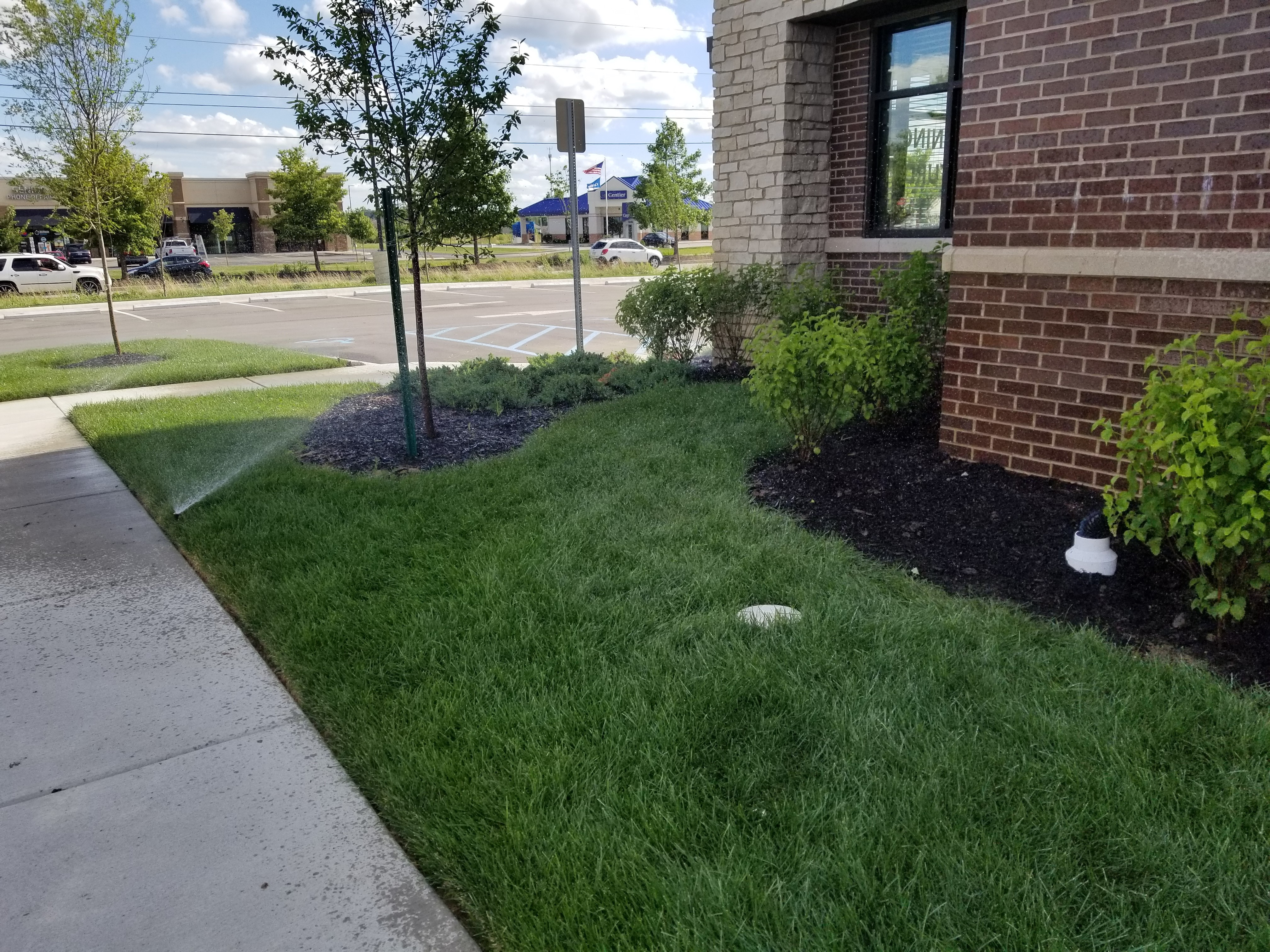 Lafayette Commercial Landscaping Project