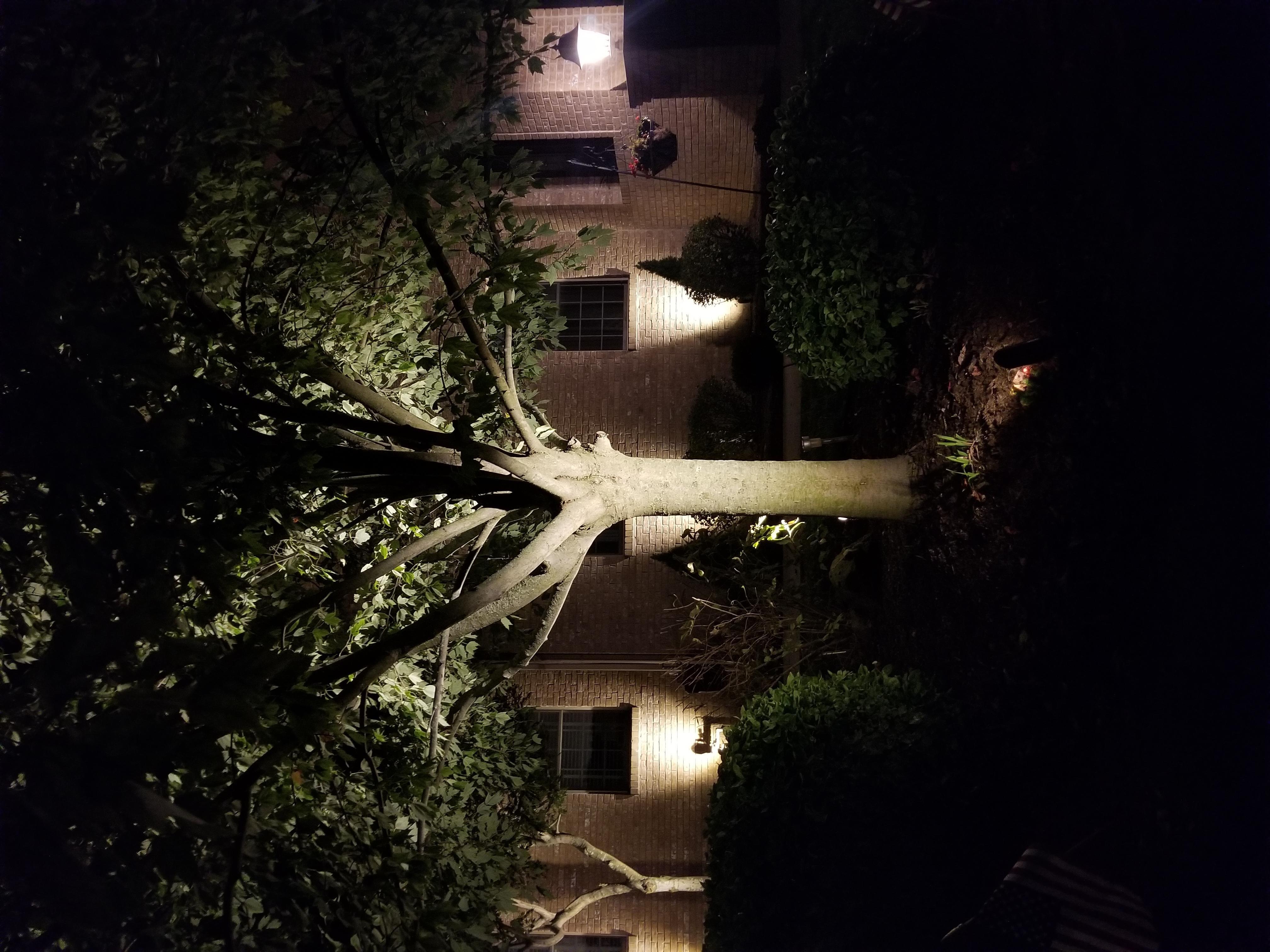 Landscape lighting Avon31