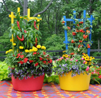Flower and Vegetable Garden Pots